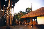 Surftrip Sumba - Kallala